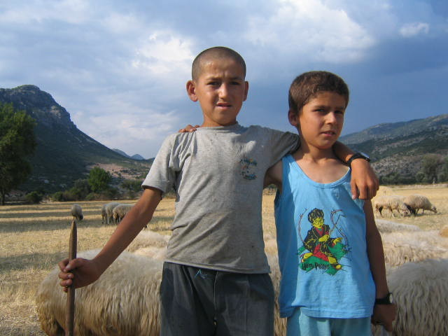 Turkish farmers - two young shepherds tend their sheep